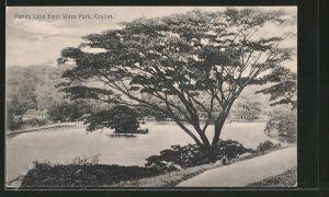 AK Kandy, Kandy Lake from Wace Park
