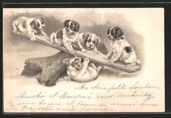Präge-AK Hundewelpen wippen auf einem Brett