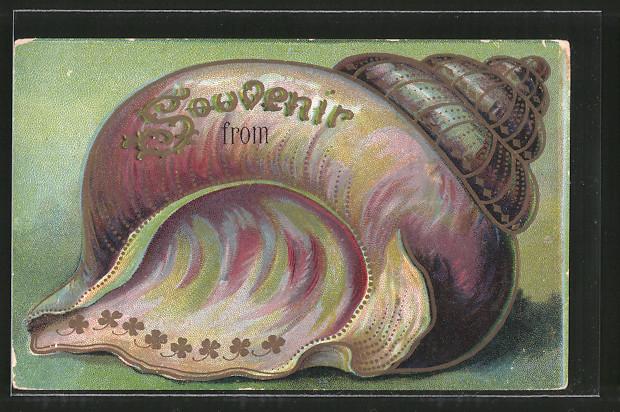 Passepartout-Lithographie Muschel mit Kleeblattornament