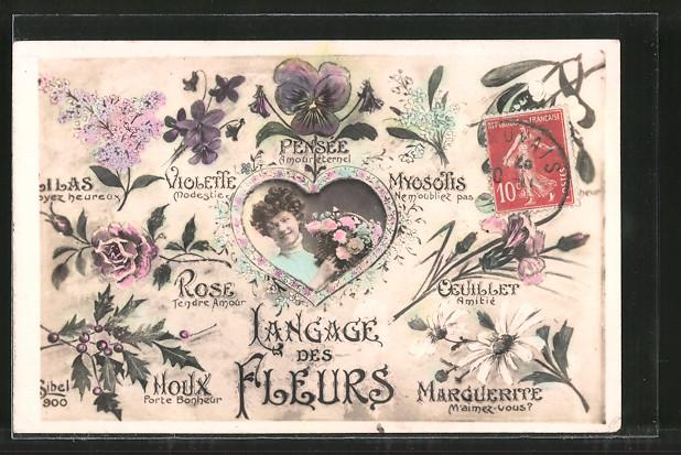 AK Langage des Fleurs, Blumensprache, Pensée, Violette, Myosotis, Rose, Qeuillet, Moux, Marguerite