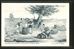 AK Landwirtschaft, La culture du riz a la fabrication de l'Amidon Remy, La mise en balles