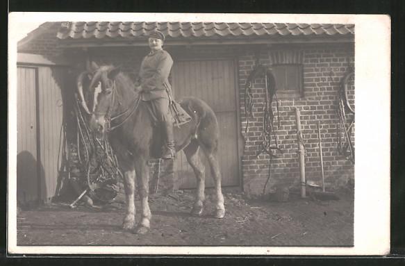 Foto-AK Feldgrauer mit Zugpferd und Geschirr