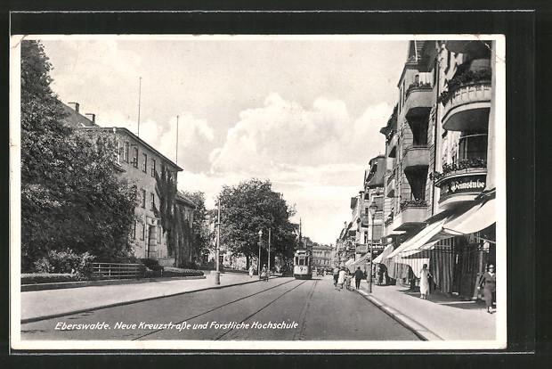 AK Eberswalde, Strassenbahn in der neuen Kreuzstrasse & Forstliche Hochschule