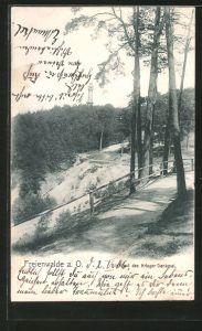 AK Bad Freienwalde, Blick auf das Kriegerdenkmal