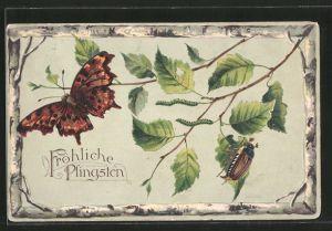 Präge-AK Fröhliche Pfingsten, Schmetterling und Maikäfer auf Birkenzweig