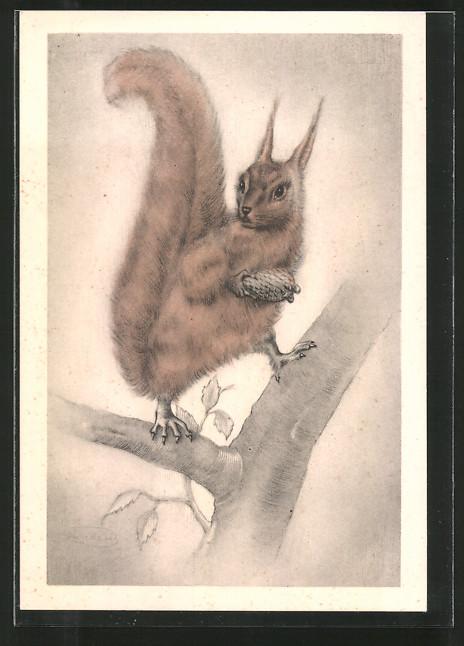 Künstler-AK Swildens: Voor het Kind, Eichhörnchen mit Zapfen