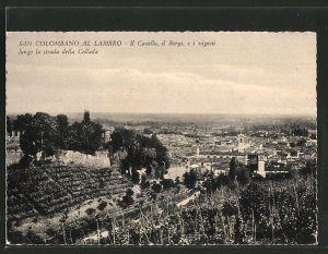 AK San Colombano al Lambro, Il Castello, il Borgo, e i vigneti lungo la strada della Collada