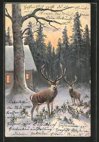 Künstler-AK M. Müller jun.: Hirsche stehen vor einem verschneiten Haus