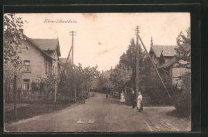 AK Klein-Schweidnitz, Strassenpartie mit Anwohnern