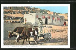 AK Pueblo of Laguna, NM, Old Caretta