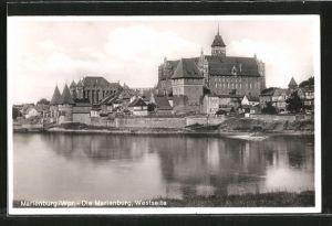 AK Marienburg / Malbork, Westseite der Marienburg