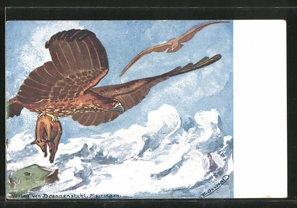 AK Vogel, Adler mit Beute in den Lüften