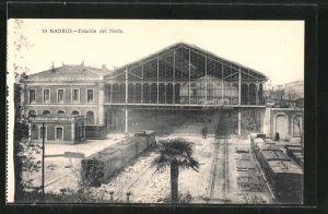 AK Madrid, Estación del Norte, Bahnhof, Eisenbahn