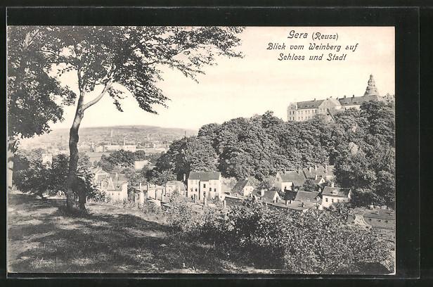 AK Gera, Blick vom Weinberg auf Schloss und Stadt