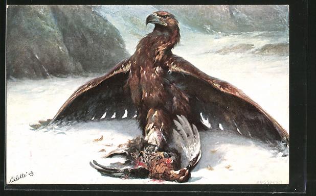 Künstler-AK Adler mit seiner Beute