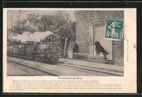 AK Neufchatel-en-Bray, französische Eisenbahn fährt in den Bahnhof ein