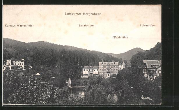 AK Bergzabern, Kurhaus Westenhöfer, Sanatorium, Waldmühle, Luisenruhe