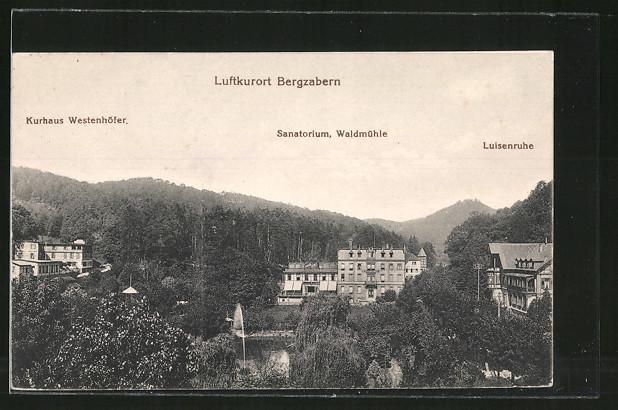 AK Bergzabern, Kurhaus Westenhöfer, Sanatorium Waldmühle, Luisenruhe