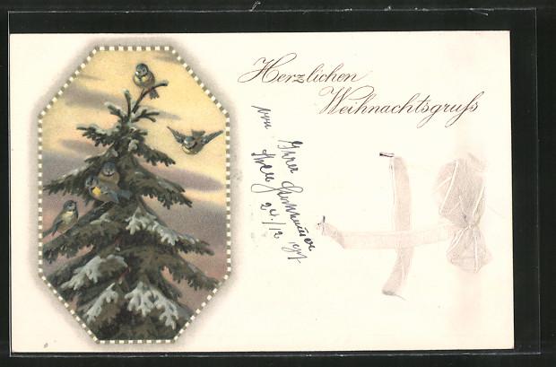 AK Herzlichen Weihnachtsgruss, Meisen auf einer Tanne, weisse Schleife