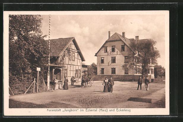 AK Stapelburg, Kuranstalt Jungborn im Eckertal und Gasthaus Eckerkrug, Pferdekutsche