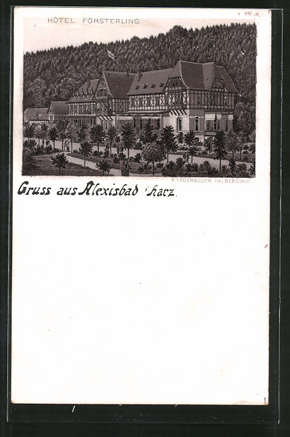 Lithographie Alexisbad, Blick zum Hotel Försterling