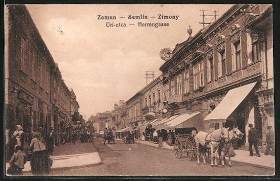 AK Zemun, Uri-utca, Herrengasse mit Geschäften