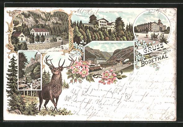 Lithographie Thale, Hotel Zehnpfund, Hotel zur Rosstrappe, Hotel Königsruhe im Bodetal