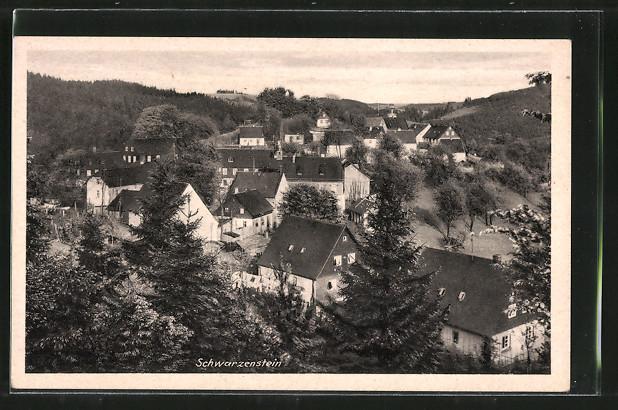 AK Schwarzenbach / Wald, Totalansicht aus der Vogelschau