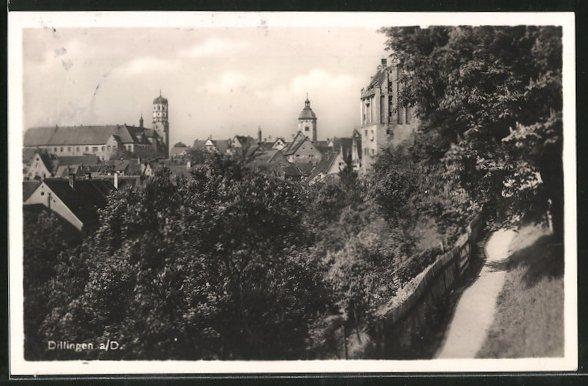 AK Dillingen, Ortspartie mit Schloss 0
