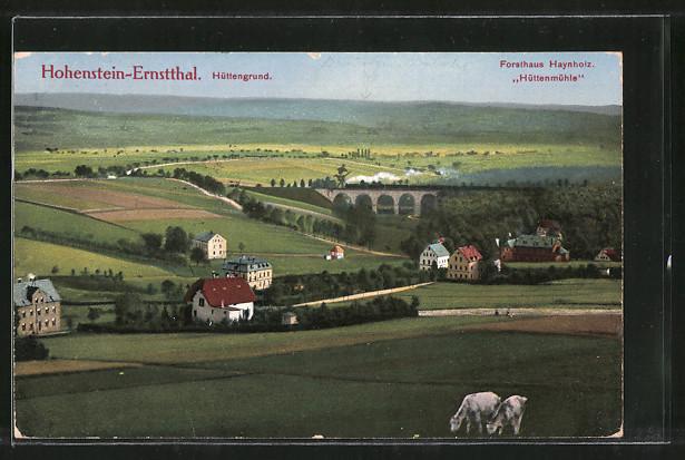 AK Hohenstein-Ernstthal, Ortsansicht, Forsthaus Haynholz