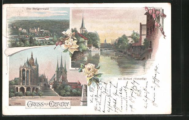 AK Erfurt, Steigerwald, Dom & Severuskirche 0