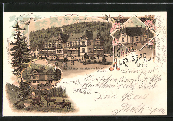 Lithographie Alexisbad, Hotel Försterling, Herzogl. Villa, Badehaus, Hirsche 0