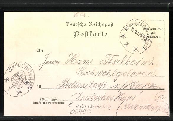 Lithographie Alexisbad, Hotel Försterling, Herzogl. Villa, Badehaus, Hirsche 1