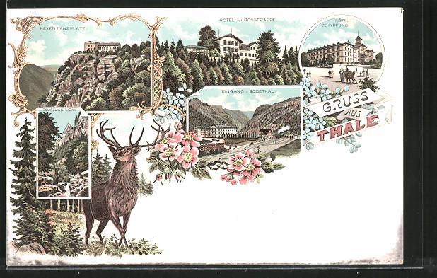 Lithographie Thale, Hexentanz-Platz, Hotel zur Rosstrappe, Hotel Zehnpfund & Teufelsbrücke