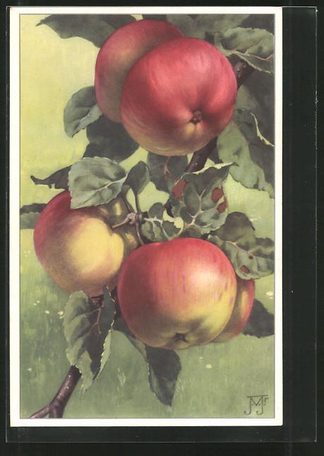 Künstler-AK Rijpende Appels, rote Äpfel zum Pflücken bereit