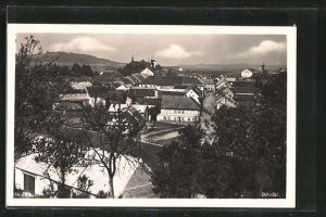 AK Dauba, Blick über die Dächer der Ortschaft