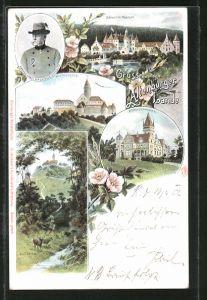 Lithographie Altenburg, Ernst von Sachsen-Altenburg, Schloss Fröhl. Wiederkunft, Leuchtenburg, Schloss Hummelshain