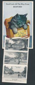 Leporello-AK Bedford, Katze in einer Box mit Ansichten von