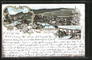 Lithographie Elsterberg, Elsterthalbrücke, Partie aus dem Steingt, Ortsansicht aus der Vogelschau