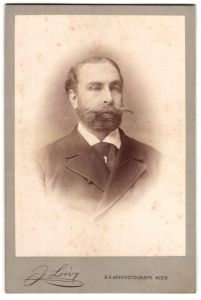 Fotografie J. Löwy, Wien, Portrait Mann im Anzug