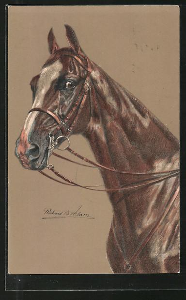 Künstler-AK Pferd mit Zaumzeug