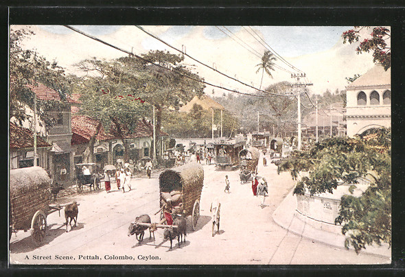 AK Colombo, Street Scene 0