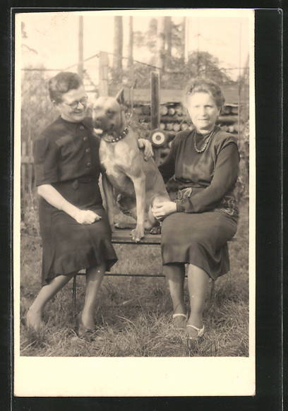 Foto-AK Zwei Frauen mit einem Boxer auf einer Bank