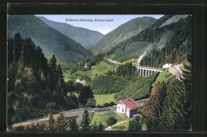 AK Höllental-Höllsteig-Schwarzwald, Eisenbahnstrecke