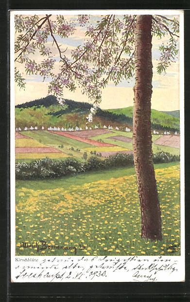 Künstler-AK Wohlgemuth & Lissner, Primus-Postkarte No. 03375, Sommerzeit, Kirschblüte