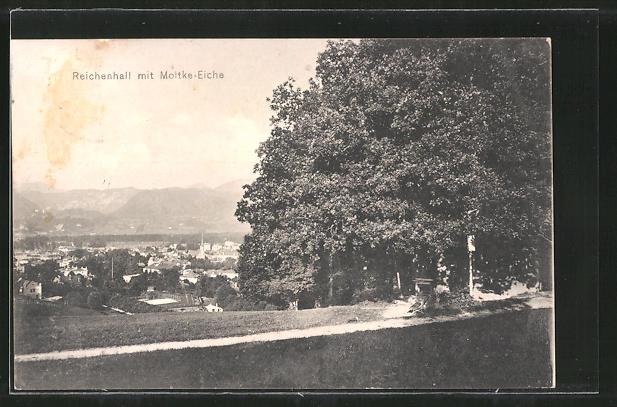 AK Bad Reichenhall, Ortsansicht von der Moltke Eiche