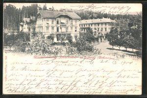 AK Eichwald, Wasserheilanstalt Theresienbad
