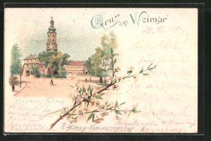 Lithographie Weimar, Partie am Residenz-Schloss