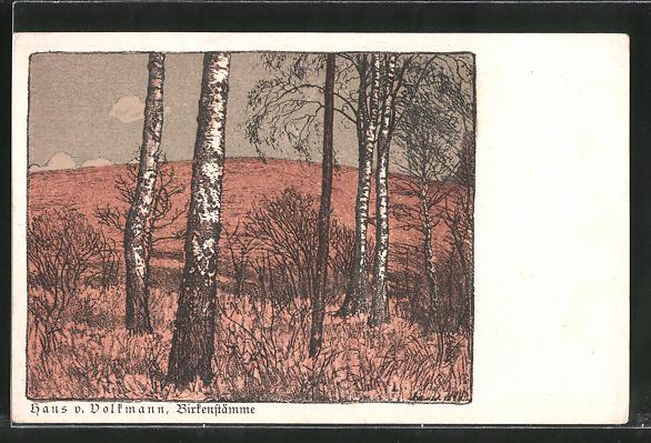 Künstler-AK Hans von Volkmann: Birkenstämme, Landidyll