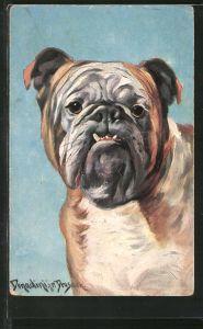 Künstler-AK Ermenegildo Carlo Donadini: Bulldogge